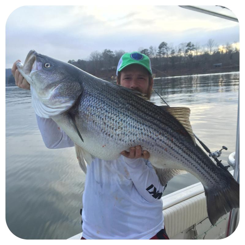 Mike Walker - Owner And Guide At Got You Hooked